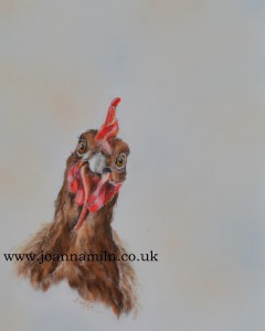 """'Who Me!' Open Giclée Print 12"""" x 10"""" with mount"""