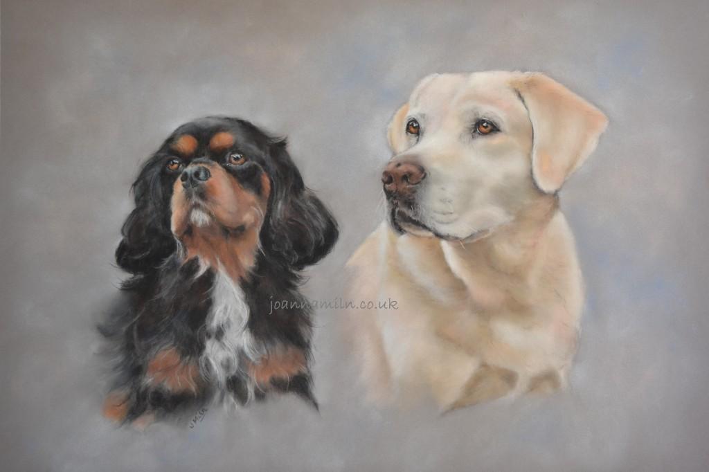 Merlotte Dogs watermarked