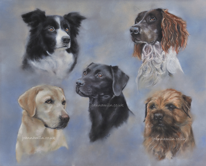 Five Dog Montage watermarked