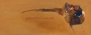 "Pheasant Limited Edition Giclée Print 18.5""x10"" £50"